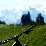 Mountain Bike Travel Bags: 5 of the best ones you can buy