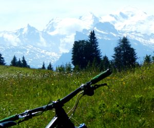 Mountain Bike Travel Bags: 4 of the best ones you can buy