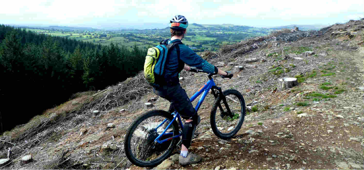 hardtail vs full suspension mountain bikes