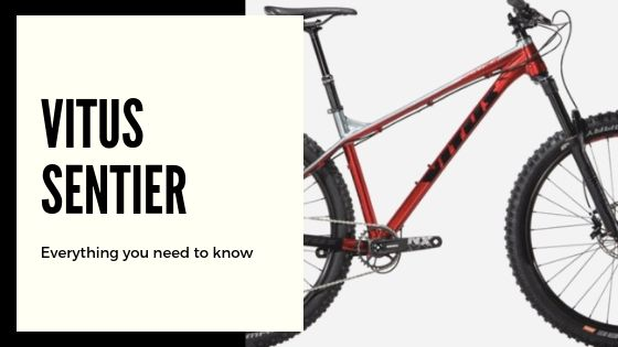 Vitus Sentier: What you need to know