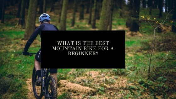 Beginner mountain bike guide