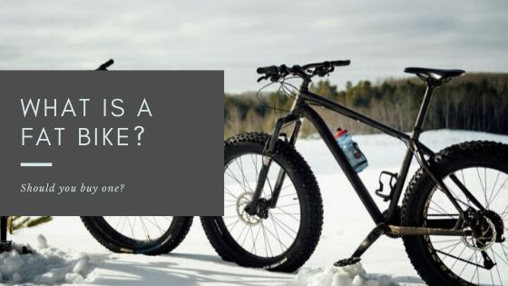 What Is A Fat Bike? - cover