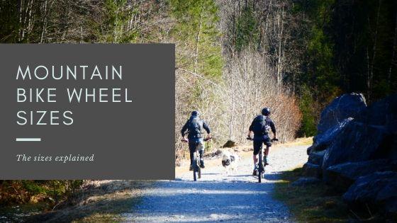 https://en.wikipedia.org/wiki/Mountain_biking