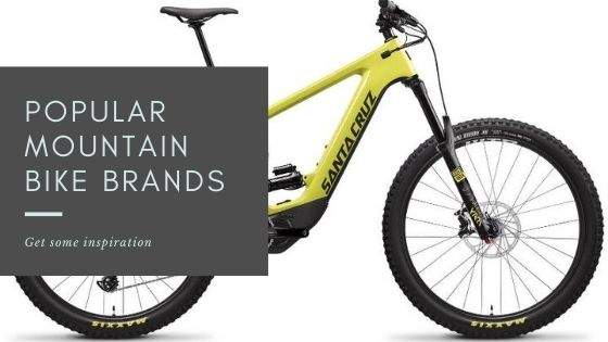 Popular Mountain Bike Brands - cover